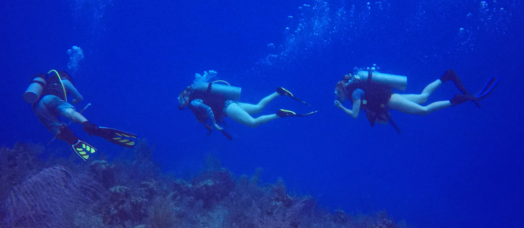Simpson College graduate Molly Fisher exploring coral reef in the Cayman Islands